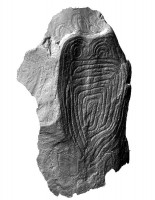 Perspective view of the decorated Guardian Stone, Knowth