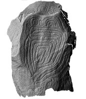 Elevation view of the decorated Guardian Stone, Knowth