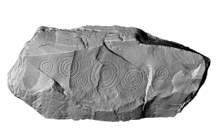 Elevation view of decorated kerbstone 67, Knowth