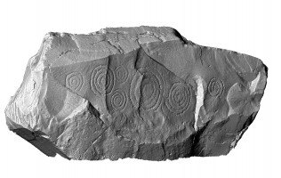 Perspective view of decorated kerbstone 67, Knowth