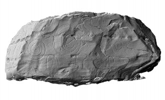 Shaded elevation image of decorated kerbstone 77, Knowth