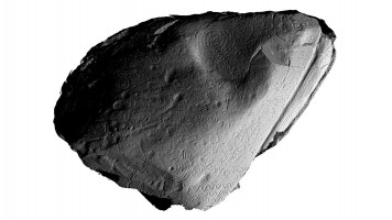 View of front face of orthostat within satellite tomb 14, Knowth (light from E)