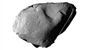 View 1 of froint face of orthostat within satellite tomb 14, Knowth (light from NW)