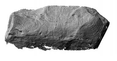 Shaded elevation image of decorated kerbstone 75, Knowth