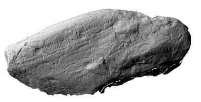 Shaded elevation image of decorated kerbstone 42, Knowth